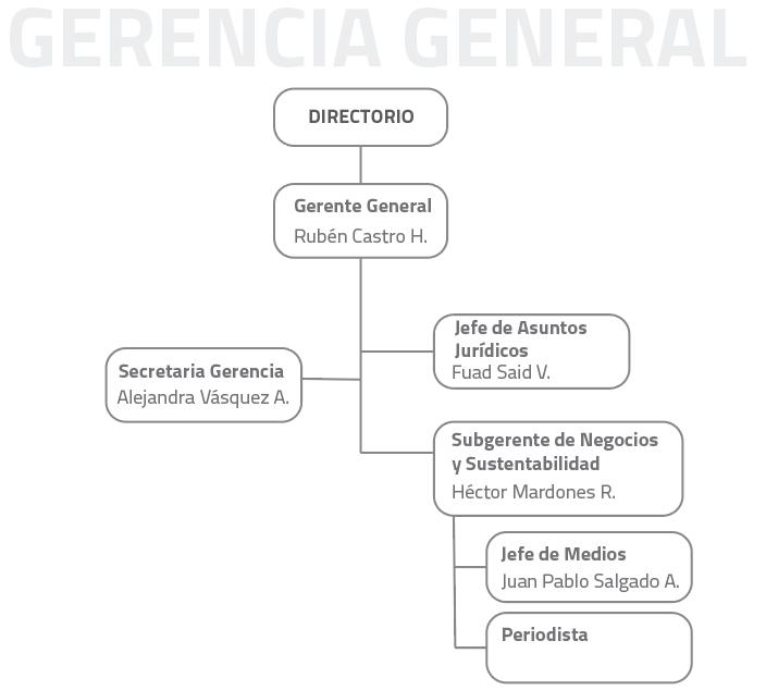 organigrama gerencia general
